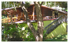 tree house for rent in montezuma, costa rica
